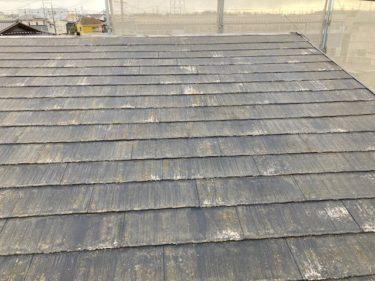 西尾市N様邸 屋根カバー工法 イージーガードで雨漏り防止