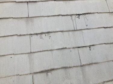 安城市K様 屋根改修工事