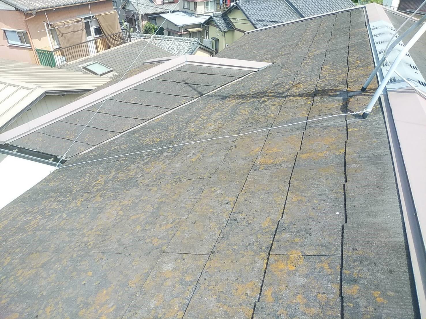 屋根の防水機能低下の症状 カビ・コケの繁殖